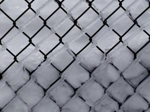 2014-02-09-Snow